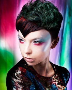 Northern Lights Hair Gallery by Anne Veck Salons